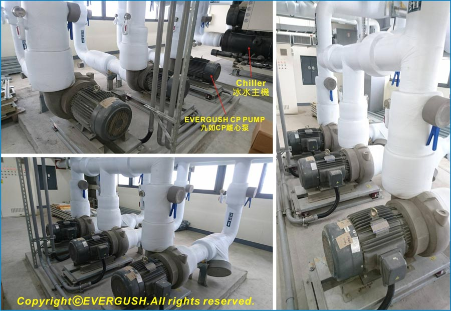 EVERGUSH CP PUMP for air-condition system-3